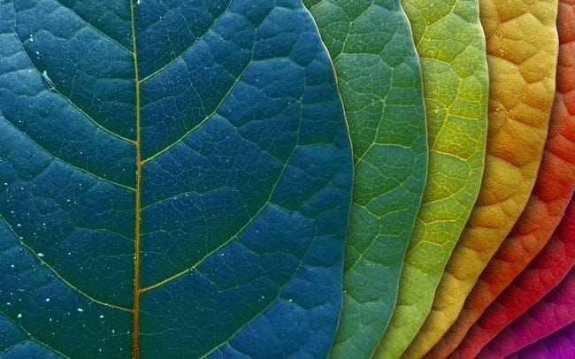 colours-wallpaper-collection-series-two-02