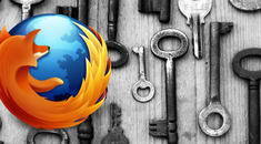 View and Delete Stored Passwords in Firefox