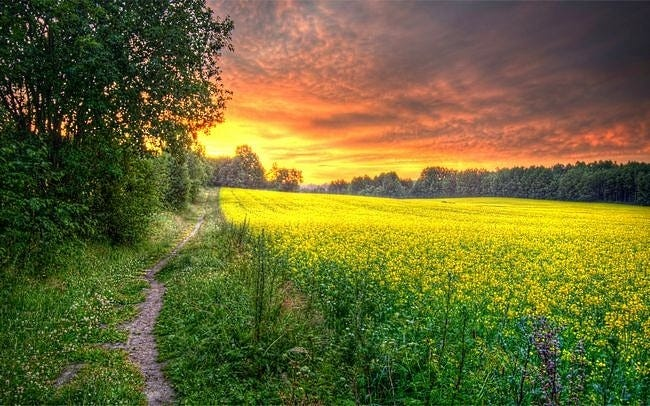 rural-scenes-wallpaper-collection-series-two-03
