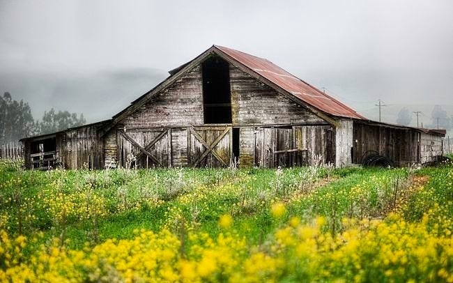 rural-scenes-wallpaper-collection-series-two-15