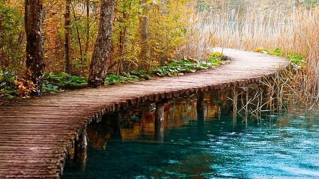 wilderness-pathways-wallpaper-collection-10