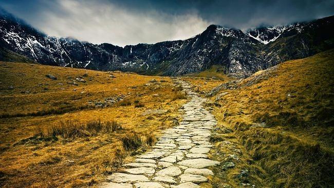 wilderness-pathways-wallpaper-collection-15
