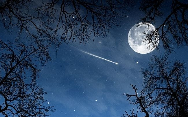 moonlit-nights-wallpaper-collection-series-two-08