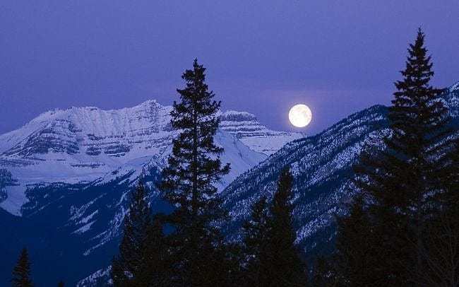 moonlit-nights-wallpaper-collection-series-two-10