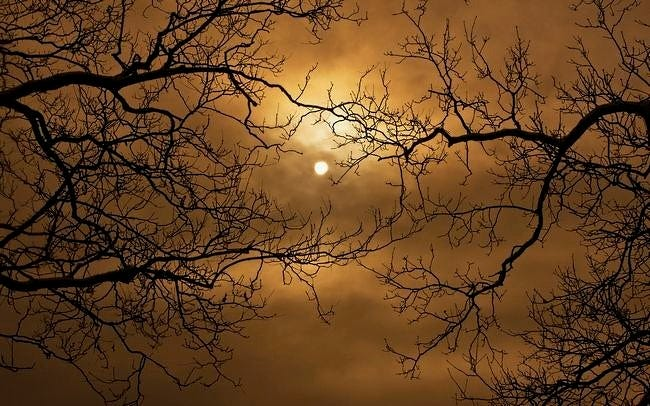 moonlit-nights-wallpaper-collection-series-two-14