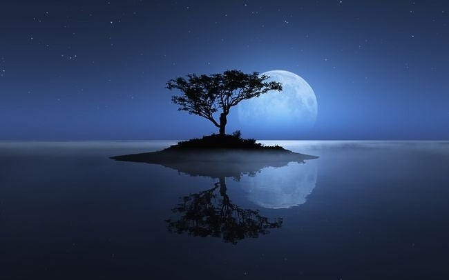 moonlit-nights-wallpaper-collection-series-two-04