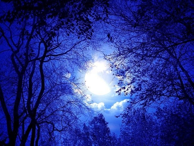 moonlit-nights-wallpaper-collection-series-two-09
