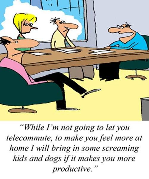 2012-07-17-(his-counter-offer-to-telecommuting)