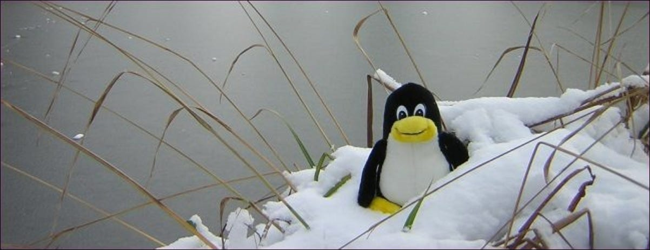 frozen tux