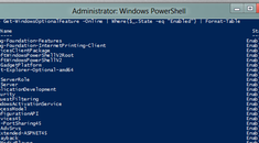 How to Manage Windows' Optional Features From PowerShell in Windows