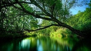 rivers-wallpaper-collection-series-one-02