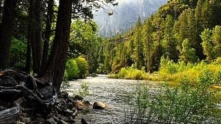 rivers-wallpaper-collection-series-one-07