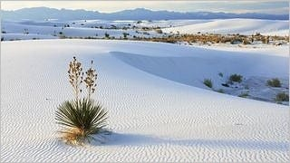 desert-areas-wallpaper-collection-series-two-01
