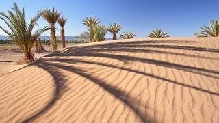 desert-areas-wallpaper-collection-series-two-03