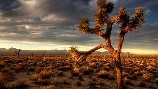 desert-areas-wallpaper-collection-series-two-05