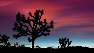 desert-areas-wallpaper-collection-series-two-16