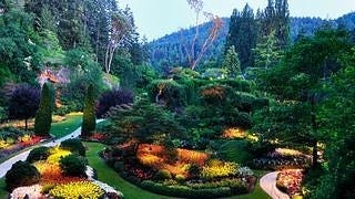 gardens-wallpaper-collection-series-two-02