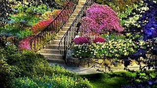 gardens-wallpaper-collection-series-two-06
