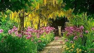 gardens-wallpaper-collection-series-two-07