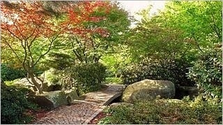gardens-wallpaper-collection-series-two-11