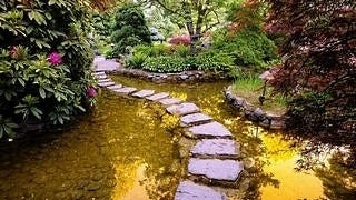 gardens-wallpaper-collection-series-two-12