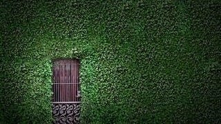 doorways-wallpaper-collection-series-one-05