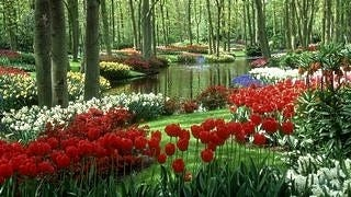 gardens-wallpaper-collection-series-two-05
