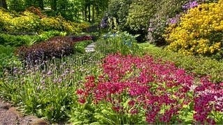 gardens-wallpaper-collection-series-two-08
