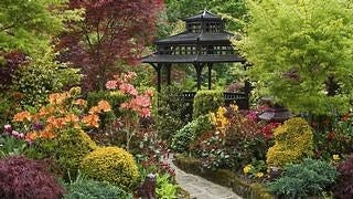 gardens-wallpaper-collection-series-two-09
