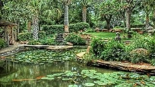 gardens-wallpaper-collection-series-two-13