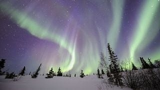 auroras-wallpaper-collection-series-two-03