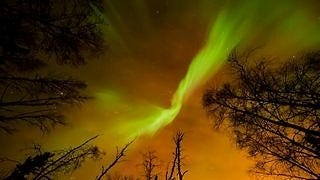 auroras-wallpaper-collection-series-two-13