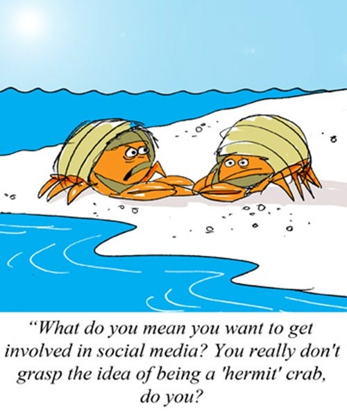 2012-10-13-(a-sociable-hermit-crab)