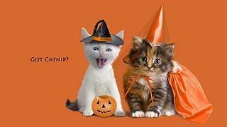 halloween-2012-wallpaper-collection-bonus-edition-01