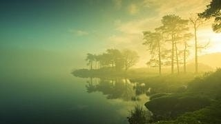 foggy-mornings-wallpaper-collection-series-two-13