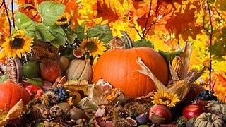 thanksgiving-day-2012-wallpaper-collection-bonus-edition-07