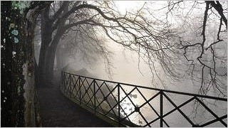 foggy-mornings-wallpaper-collection-series-two-15