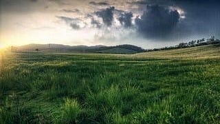grasslands-wallpaper-collection-series-two-04