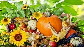 thanksgiving-day-2012-wallpaper-collection-bonus-edition-06