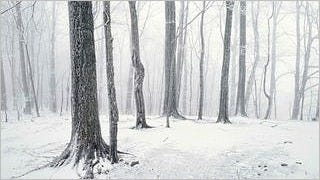 winter-2012-wallpaper-collection-bonus-size-07