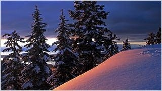 winter-2012-wallpaper-collection-bonus-size-16
