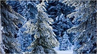 winter-2012-wallpaper-collection-bonus-size-11