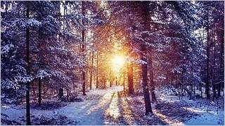 winter-2012-wallpaper-collection-bonus-size-17