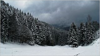 winter-2012-wallpaper-collection-bonus-size-13
