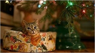 christmas-2012-wallpaper-collection-bonus-edition-03