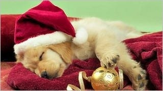 christmas-2012-wallpaper-collection-bonus-edition-04