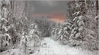 winter-2012-wallpaper-collection-bonus-size-09