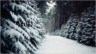 winter-2012-wallpaper-collection-bonus-size-12