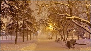 winter-2012-wallpaper-collection-bonus-size-19