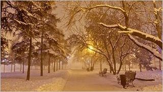 winter-2012-wallpaper-collection-bonus-size-19